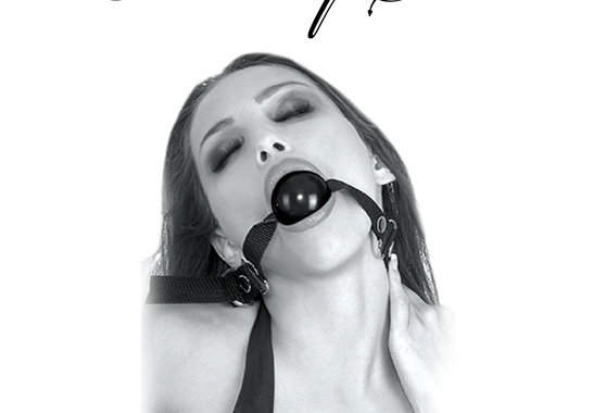 BEGINNER'S BALL GAG – FETISH FANTASY SERIES